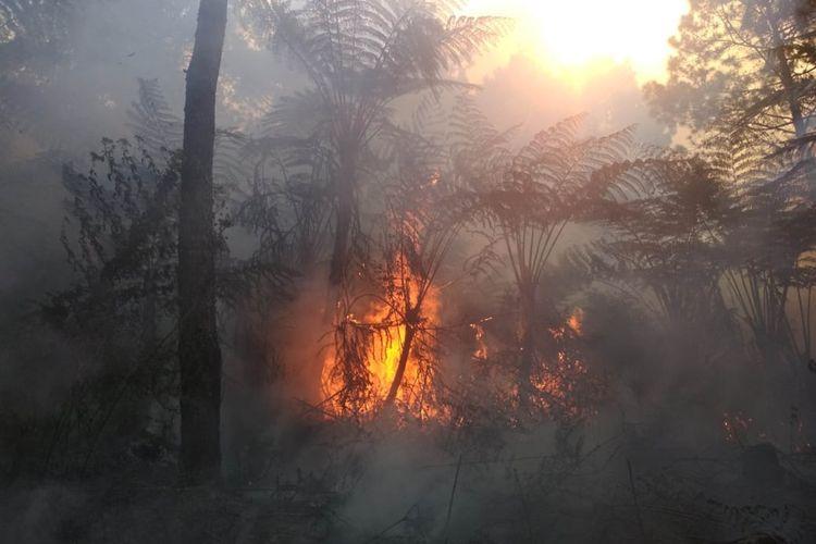 Kawasan lereng hutan Gunung Slamet di Dukuh Bambangan, Desa Kutabawa, Kecamatan Karangreja, Kabupaten Purbalingga, Jawa Tengah, terbakar, Rabu (12/9/2019).