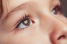 Mengapa Bulu Mata Tidak Tumbuh Sepanjang Rambut Kepala?