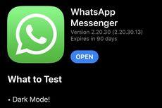 WhatsApp di iPhone Mulai Kebagian Dark Mode