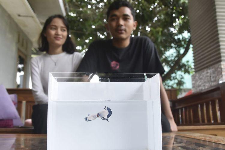 Rizky Muhammad (21) dan Indri (21) bersama cupang yang dijadikan mas kawin, Senin (14/12/2020)