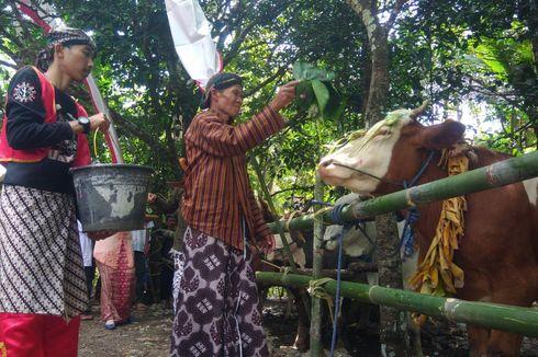 Guyangan, Tradisi Unik Warga Bantul Menjelang Hari Kurban