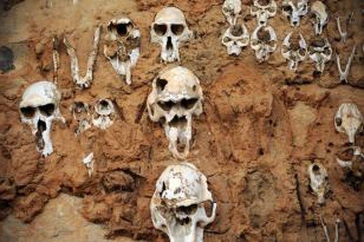 Seorang pria warga Austria senang mencuri tengkorak dan tulang belulang manusia dari pemakaman di dekat rumahnya