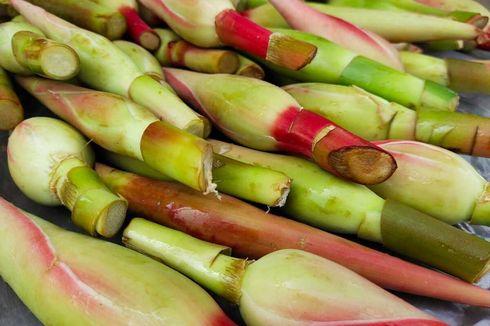Pakar IPB: Rempah dan Makanan Lokal Ini Dapat Cegah Covid-19