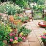 4 Ide Ringkas Bikin Kebun Mungil di Rumah