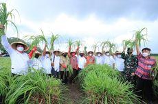 OJK Resmikan KUR Klaster Pertanian Serai Wangi di Minahasa