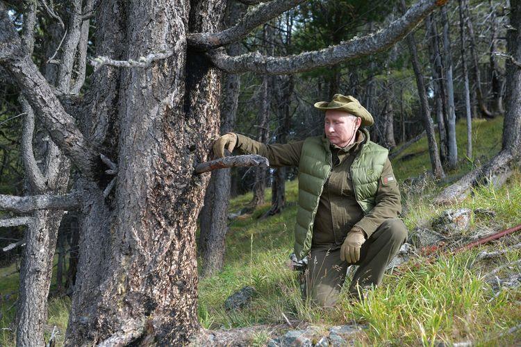 Presiden Rusia Vladimir Putin berpose ketika tengah berjalan di area Taiga Siberia pada 6 Oktober 2019.