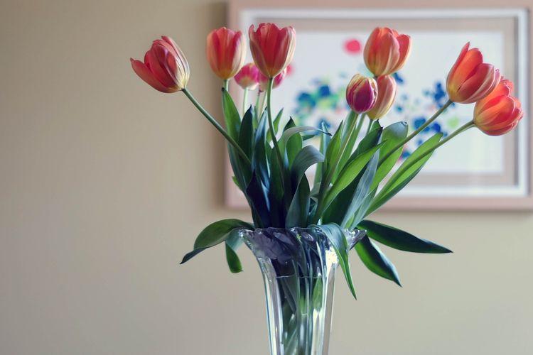 Ilustrasi bunga segar di dalam vas.