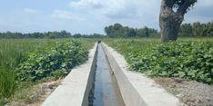 Lakukan RJIT, Kementan Dorong Produktivitas Pertanian di Desa Abianbase