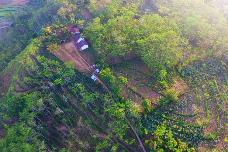 Inilah SDN Darsono 4, Kecamatan Arjasa, Kabupaten Jember, Jawa Timur, Ketika Diambil Dari Foto Udara.