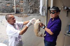 Cegah Rabies, 67 Ekor Hewan Peliharaan Milik Warga Duri Kosambi Diberi Vaksin