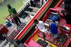 2.032 Kepiting Bertelur Disita Saat Akan Diselundupkan ke Malaysia
