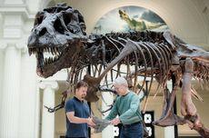 Hari Ini dalam Sejarah: Kerangka T-Rex Ditemukan di South Dakota
