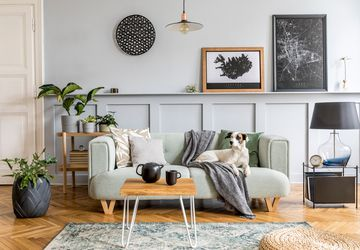 Tips dan Trik Memilih Warna Cat Dinding agar Rumah Lebih Cerah