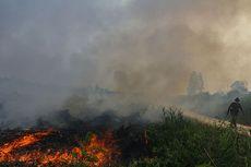 Walhi: Pemerintah Klaim Titik Api dan Kebakaran Turun, Nyatanya Sama