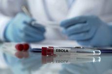 Kembali Merebak di Kongo, Berikut Beda Virus Ebola dengan Corona...