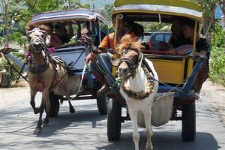 Cidomo, moda transportasi di Pulau Lombok, Nusa Tenggara Barat.
