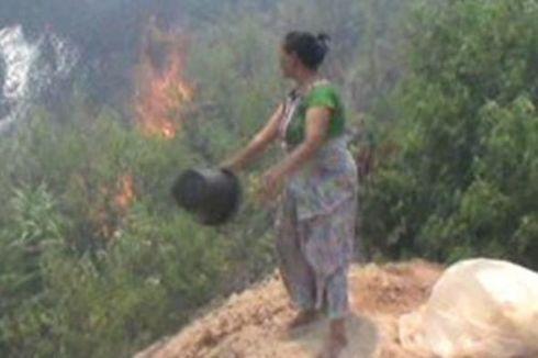 Hutan Terbakar Selama Sepekan, Permukiman Warga Dikepung Api