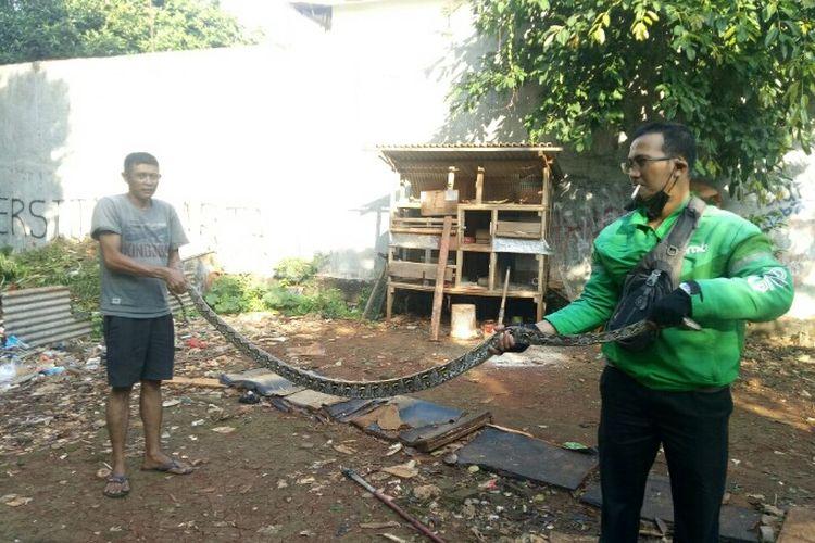 Warga yang berlokasi di Jalan H. Abu RT 05 RW 07, Cipete Selatan, Jakarta Selatan, menangkap ular sepanjang sekitar 2,5 meter, Jumat (28/5/2021), pagi.