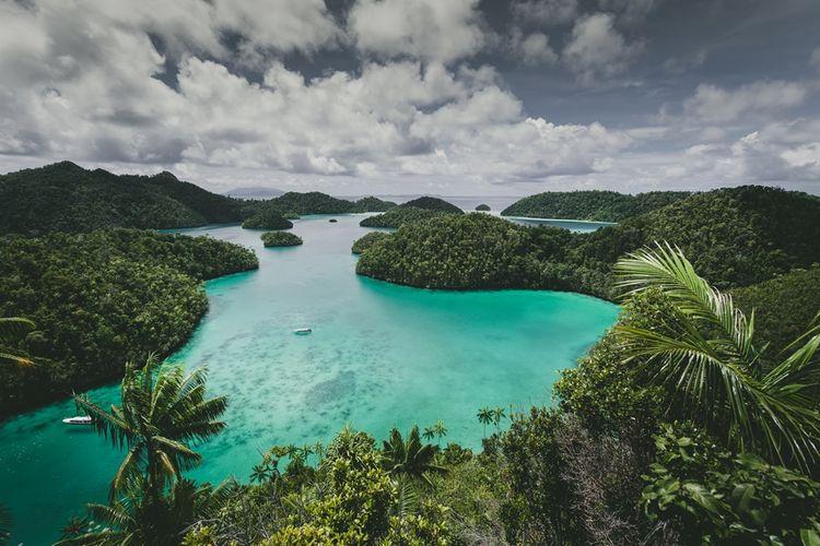 Raja Ampat di Papua Barat menjadi rumah bagi sekitar 1.500 spesies ikan, 500 spesies koral, dan lebih dari 600 hewan bawah laut.
