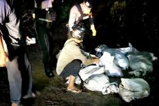 Warga Sampit Temukan 10 Karung Berisi Ular Piton Dibuang di Tengah Jalan
