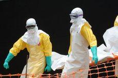 MSF: Wabah Ebola di Afrika Barat Tak Terkendali