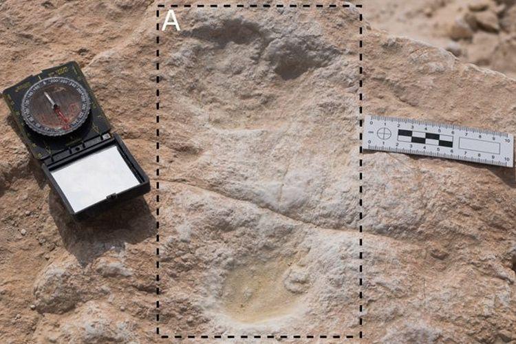 Jejak kaki manusia purba berusia 120.000 tahun, ditemukan di Arab Saudi.