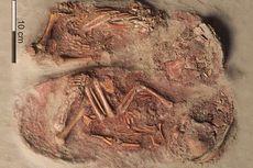 Ahli Temukan Kerangka Bayi Kembar Identik dari Era Paleolitikum Akhir