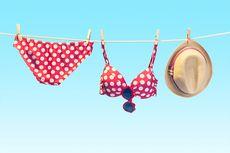 Pakai Bikini Tipis di Pantai Boracay Filipina, Turis Taiwan Ditangkap dan Didenda Rp 685.000