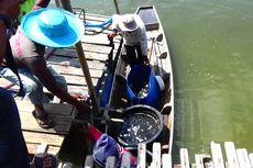 Ribuan Ikan Kerapu di Keramba Mati Mendadak di Lhokseumawe, Peternak Rugi Ratusan Juta