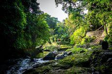 6 Resor Mewah di Tepi Sungai Ayung, Bali yang Mendamaikan
