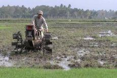 Tantangan Pertanian di Indonesia, Mulai dari Regenerasi Sampai Paradigma
