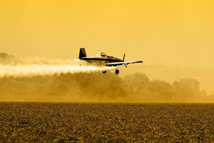 Sebuah pesawat menyemprotkan pestisida di ladang.