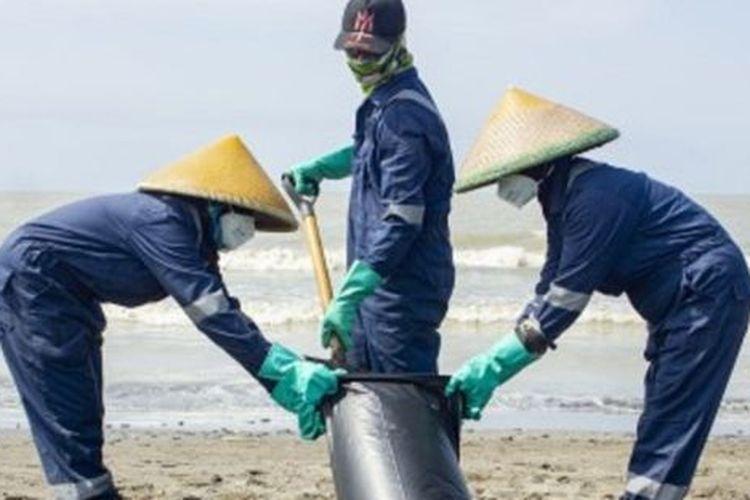 Petugas mengumpulkan tumpahan minyak mentah yang tercecer di Pesisir Pantai Mekarjaya, Karawang, Jawa Barat, Kamis (8/8/2019)