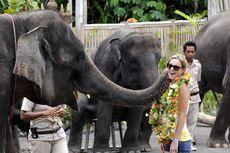 Harga Tiket Bali Safari Marine Park 2020, Begini Cara Belinya