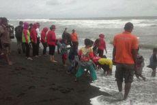 Jadi Tempat Konservasi Penyu, Pantai di Kulon Progo Berkembang Jadi Eduekowisata