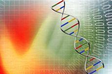Karakteristik dan Cara Pembacaan Kode Genetik