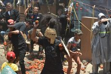 Perang Tomat, Bentuk Protes Para Petani, Kini Berubah Jadi Atraksi yang Dinanti
