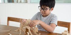 Anak Usia Dini Dilatih Berpikir Kritis, Apa Bisa?