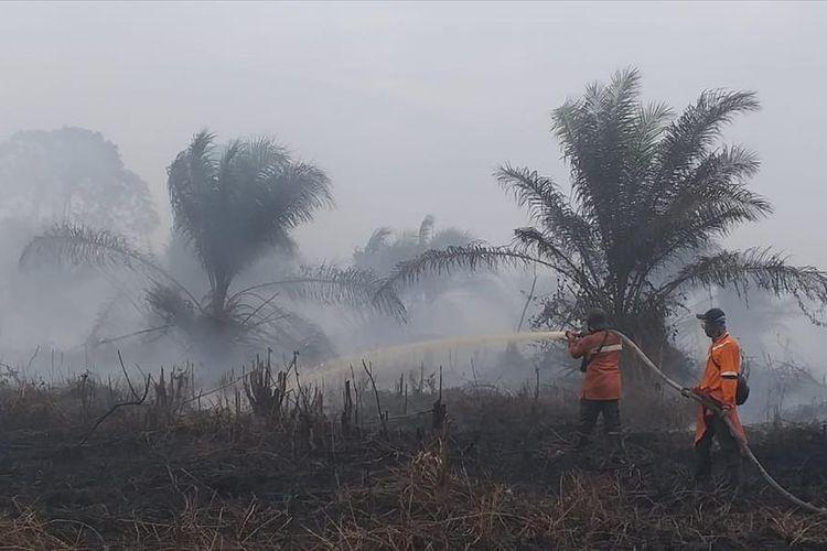 Tim Manggala Agni Daops Siak memadamkan api kebakaran lahan milik perusahaan di Desa Sri Gemilang, Kecamatan Koto Gasib, Kabupaten Siak, Riau, Kamis (25/7/2019).