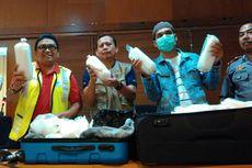 Petugas Bandara Lombok Gagalkan Penyelundupan Bayi Lobster Rp 1,6 Miliar