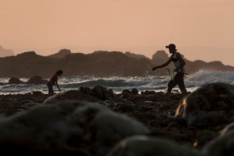 Warga berburu nyale di Pantai Seger, Llombok Tengah, NTB, dalam Festival Pesona Bau Nyale 2020.