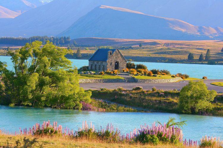 Ilustrasi Selandia Baru - Lake Tekapo.