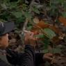 Cerita Singkat Kegiatan Tim Peneliti di Pulau Simeulue, Jawaban Belajar TVRI 3 Agustus SMA