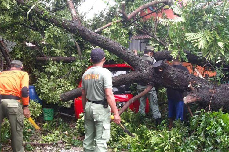 Pohon tumbang menimpa mobil di Jalan dr Suparno, Purwokerto, Kabupaten Banyumas, Jawa Tengah, Jumat (6/11/2020).
