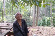 Tolak Rp 10 Miliar demi Jaga Hutan, Kakek Suhendri: Oksigen bagi Warga