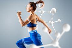 Metabolisme: Pengertian, Proses, dan Faktornya