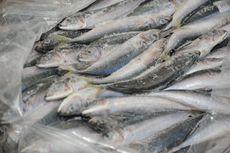 Terdeteksi Mengandung Covid-19, Bea Cukai China Tangguhkan Ikan Beku Impor Asal Indonesia