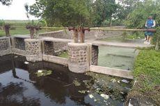 Pencemaran Sungai Avur, KLHK Selidiki Dua Pabrik Kertas