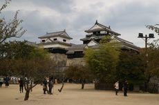 Ke Istana Matsuyama Jepang, Ini Aktivitas Unik yang Bisa Kamu Lakukan