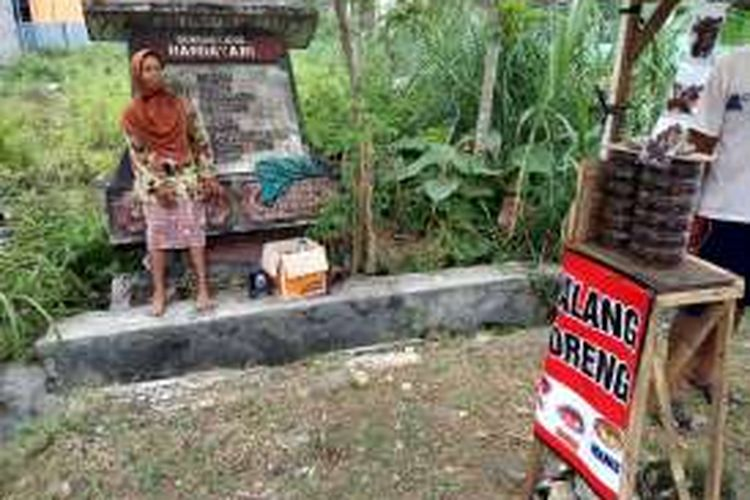 Kaminah (50), pedagang belalang goreng tengah menunggu pembeli di pinggir Jalan Baron Km 2, Gunungkidul, Yogyakarta, Selasa (12/7/2016).